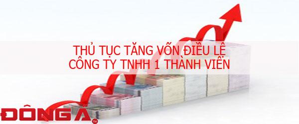 thu-tuc-tang-von-dieu-le-cong-ty-tnhh-1-thanh-vien