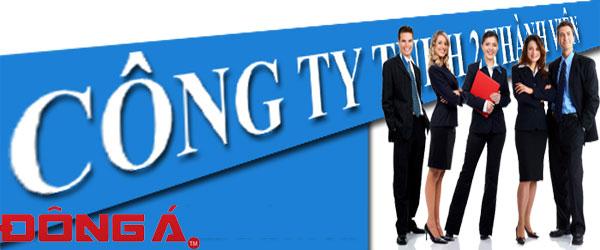 thay-doi-dang-ky-kinh-doanh-cong-ty-tnhh-2-thanh-vien-tro-len