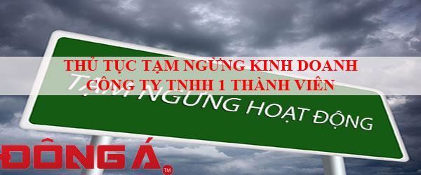 thu-tuc-tam-ngung-kinh-doanh-cong-ty-tnhh-1-thanh-vien
